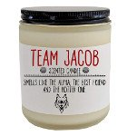 bookish holiday gift guide team jacob candle