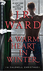 a warm heart in winter book cover new releases december 2020