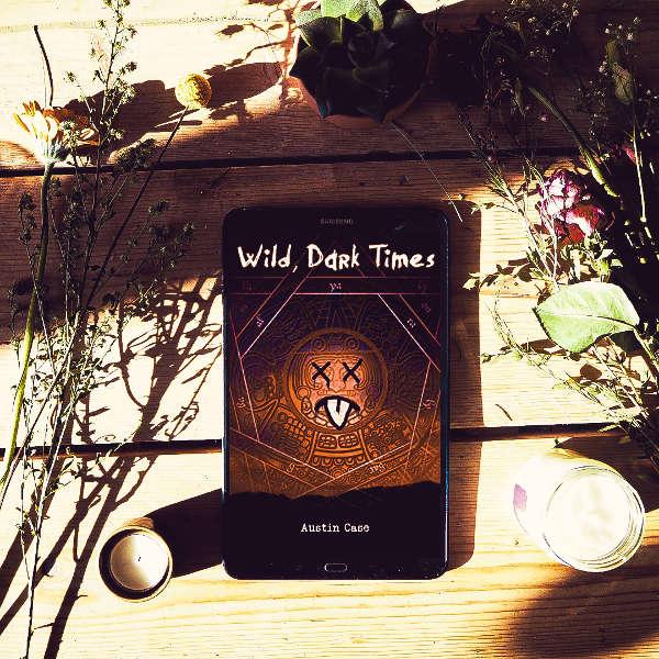 wild dark times book cover
