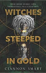 new fantasy releases witches steeped in gold book cover